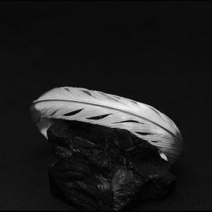Feather bracelet by Harvey Chavez